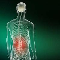 ízületi fájdalom szimulátor