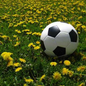 Következtetés, kiegészítés, javaslat: sport, fizikai aktivitás és a krónikus derékfájdalom