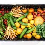 Az A-vitamin és a csonttörés kockázata